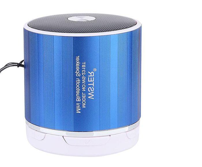 Loa Bluetooth Wireless Speaker WS-230BT